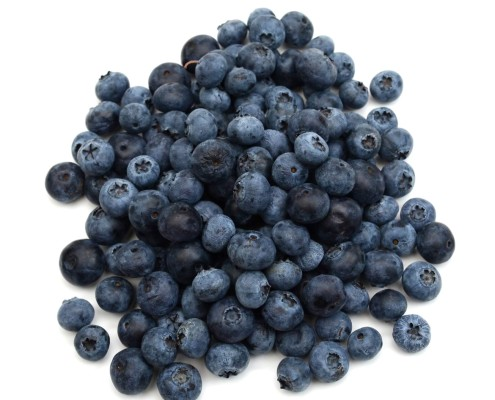 Fresh blueberries for The Complex Bean - Coffee Bar and Bakery